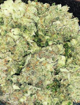 Buy Bubba Kush Online Order Bubba Kush Ireland Buy Bubba Kush Europe Order Bubba Kush UK Buy High THC Weed Online Where to Buy Bubba Kush Near Me